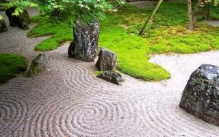 Сад камней своими руками